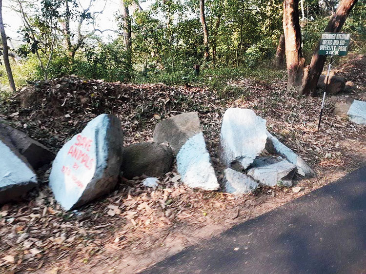 Painted boulders along a stretch of National Highway 37