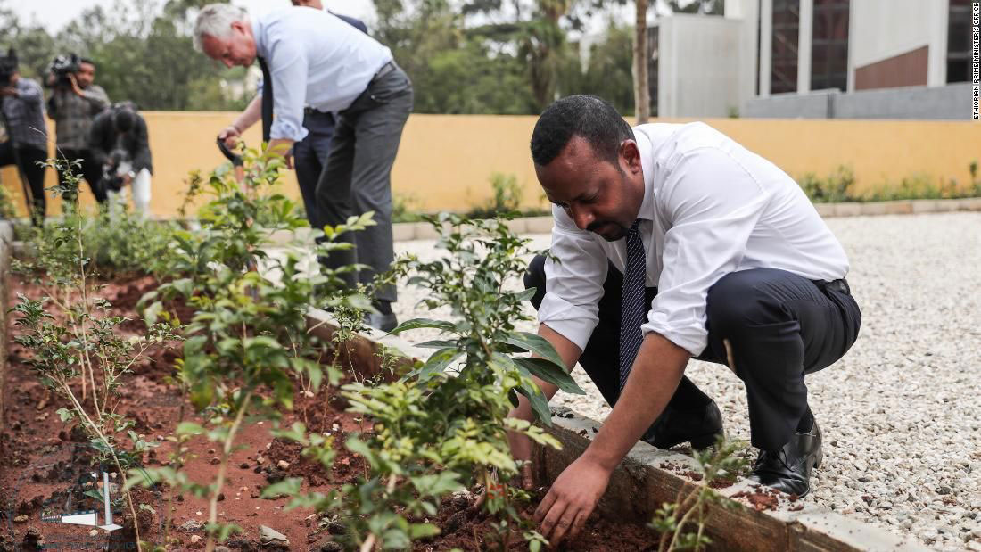 A tree planting drive in Ethiopia, part of a national 'green legacy' initiative, encouraged every citizen to plant at least 40 seedlings