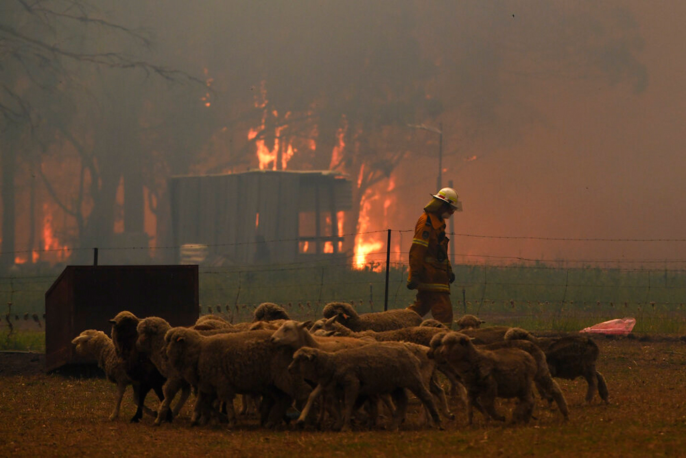 Fire fighters try to contain a blaze along the Old Hume Highway near the town of Tahmoor, New South Wales, Australia, on December 19