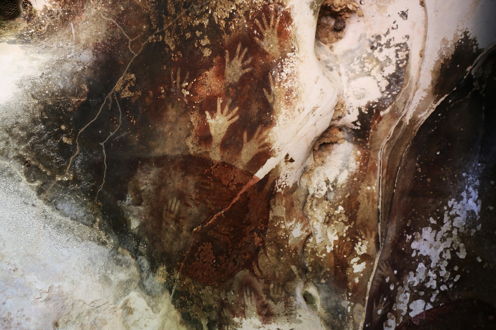 Paintings in the Sulawesi cave