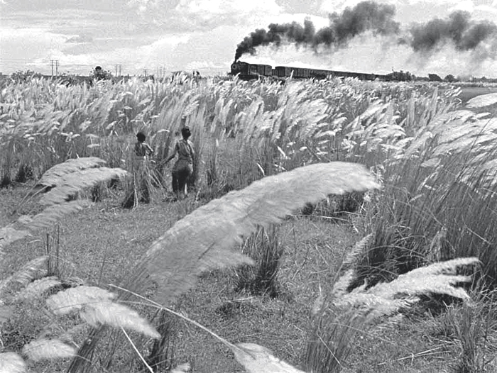 A still from Satyajit Ray's film 'Pather Panchali'. In 'Our Films, Their Films', Ray recalls the first day of shooting the film, in which Apu and Durga, the brother and sister in the story, are seen walking gingerly through a field of kaash grass