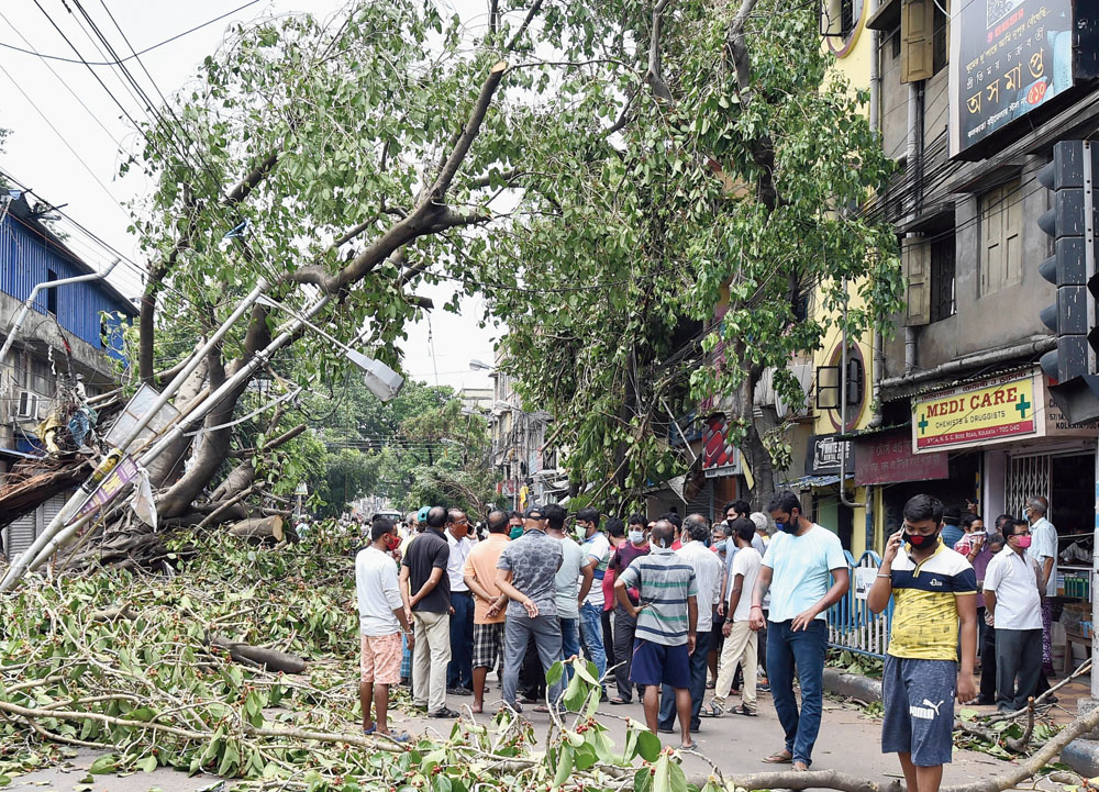 Residents protest against delay in removal of uprooted trees and fixing power lines on NSC Bose Road on Friday.