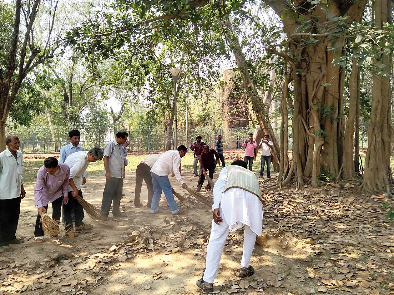 Rabindra Bhavana employees clean the area near one of the trees.