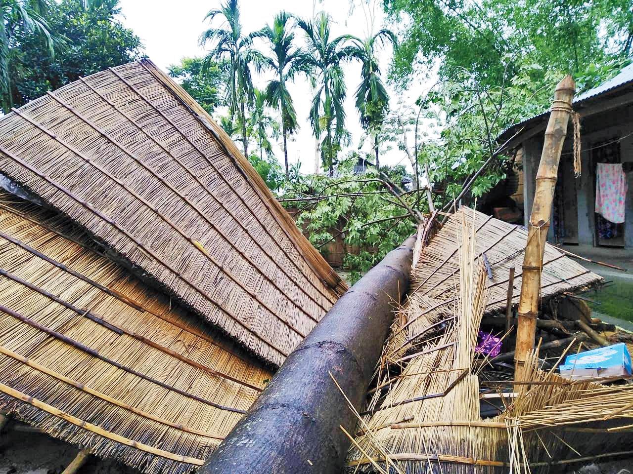 A hut damaged by a fallen tree at Kunjanagar in the Falakata block of Alipurduar district.