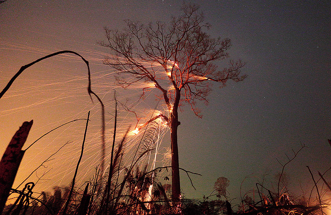 A tract of the Amazon jungle goes down in flames