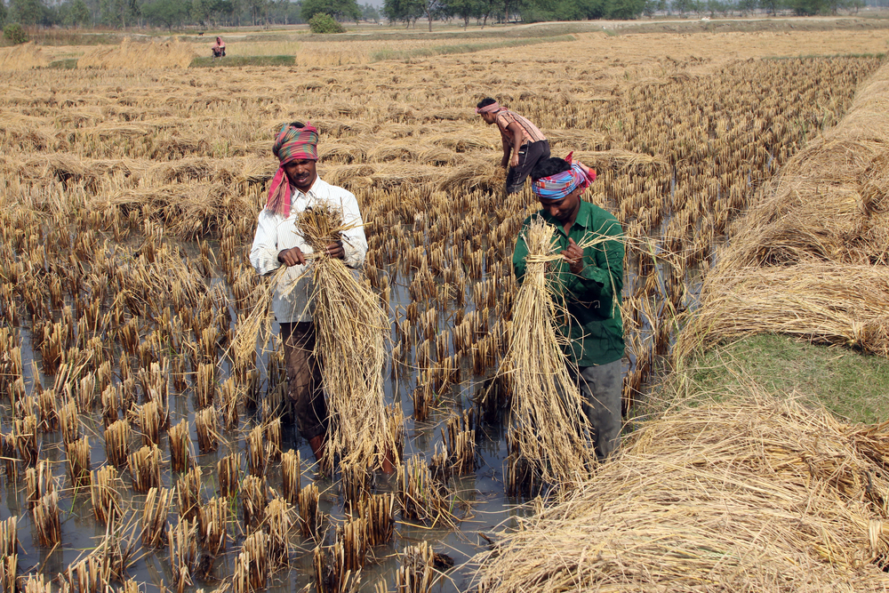 HLC has approved a proposal to grant a central assistance of Rs 111.70 to three states -- Rajasthan, Manipur and Meghalaya -- for incurring kharif (summer) crop damage due to natural calamities