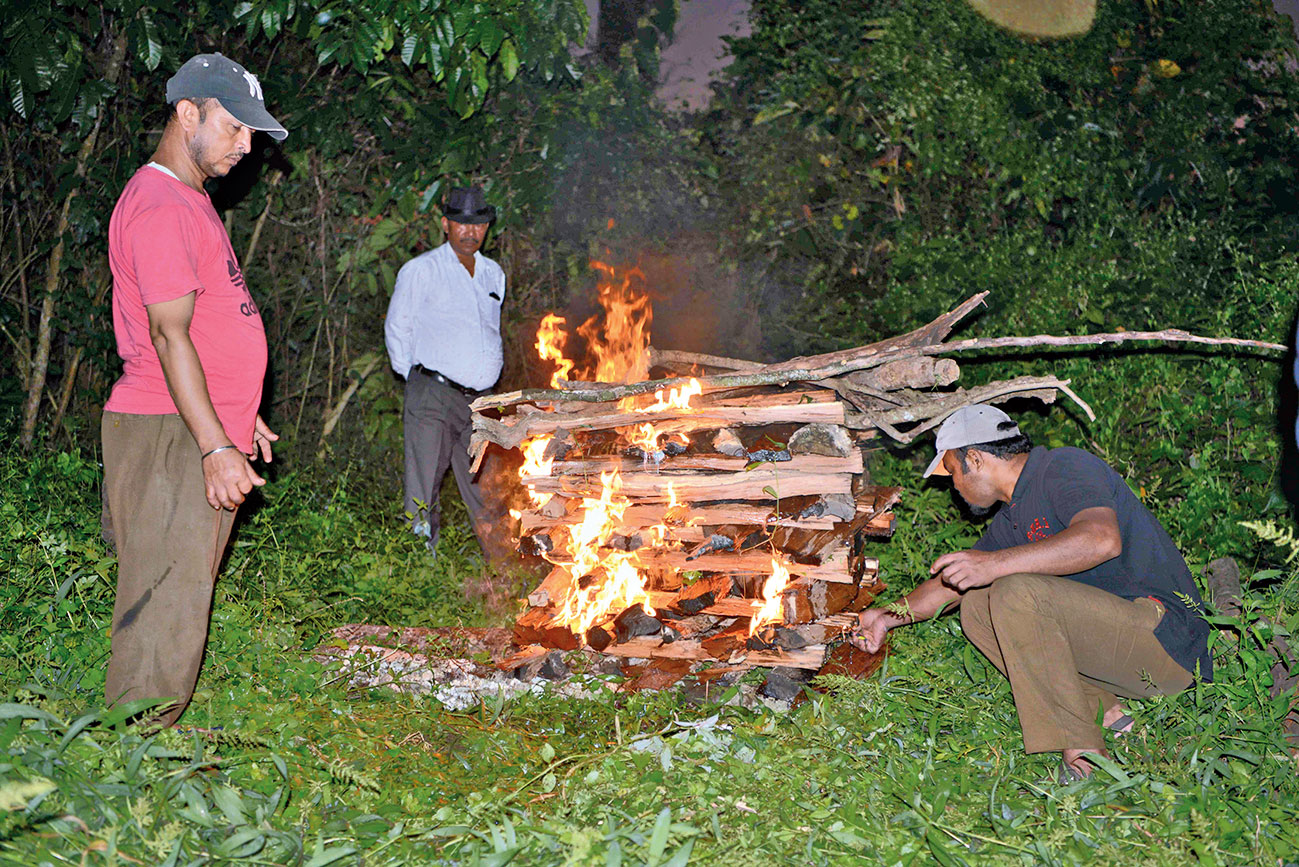 The animal being cremated by forest staff.