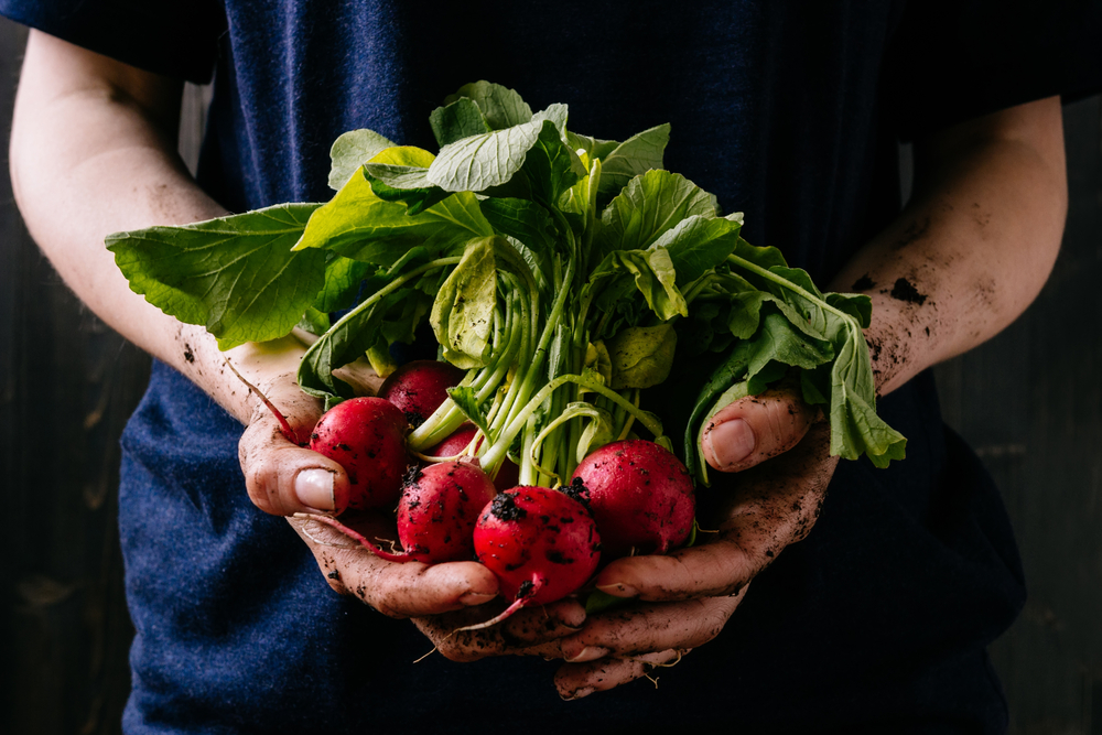 The organic market is estimated to reach Rs 75,000 crore by 2025 from Rs 27,000 crore currently