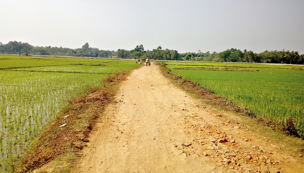 Dead — Morali: Local folk talk of crocodile sightings in this river till the late 1950s. Now roads, entire villages and even paddy fields have come up on the river bed