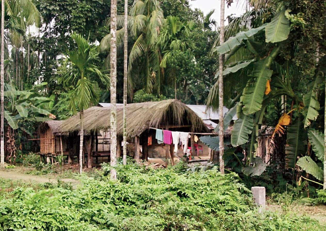 A traditional Assamese village