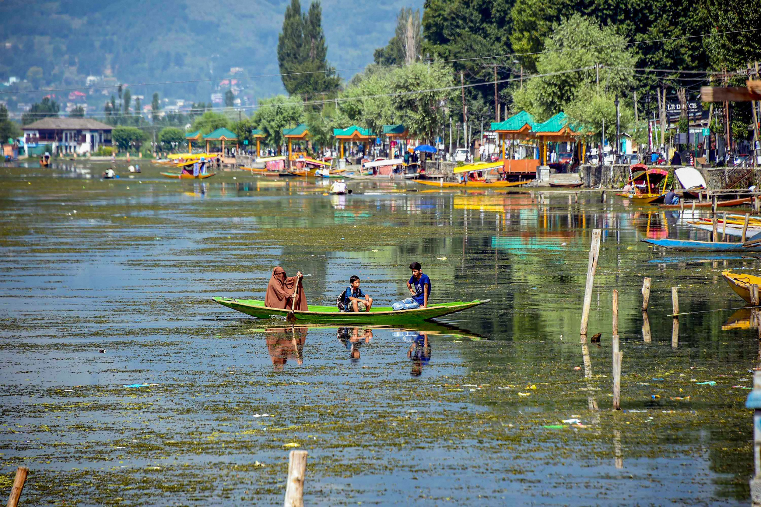 A woman rows her boat across the Dal Lake in Srinagar on August 22, 2019.