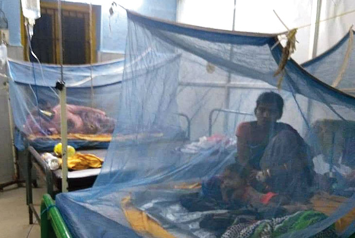 Solitary: A woman in the special dengue treatment ward of SCB Medical College and Hospital in Cuttack.