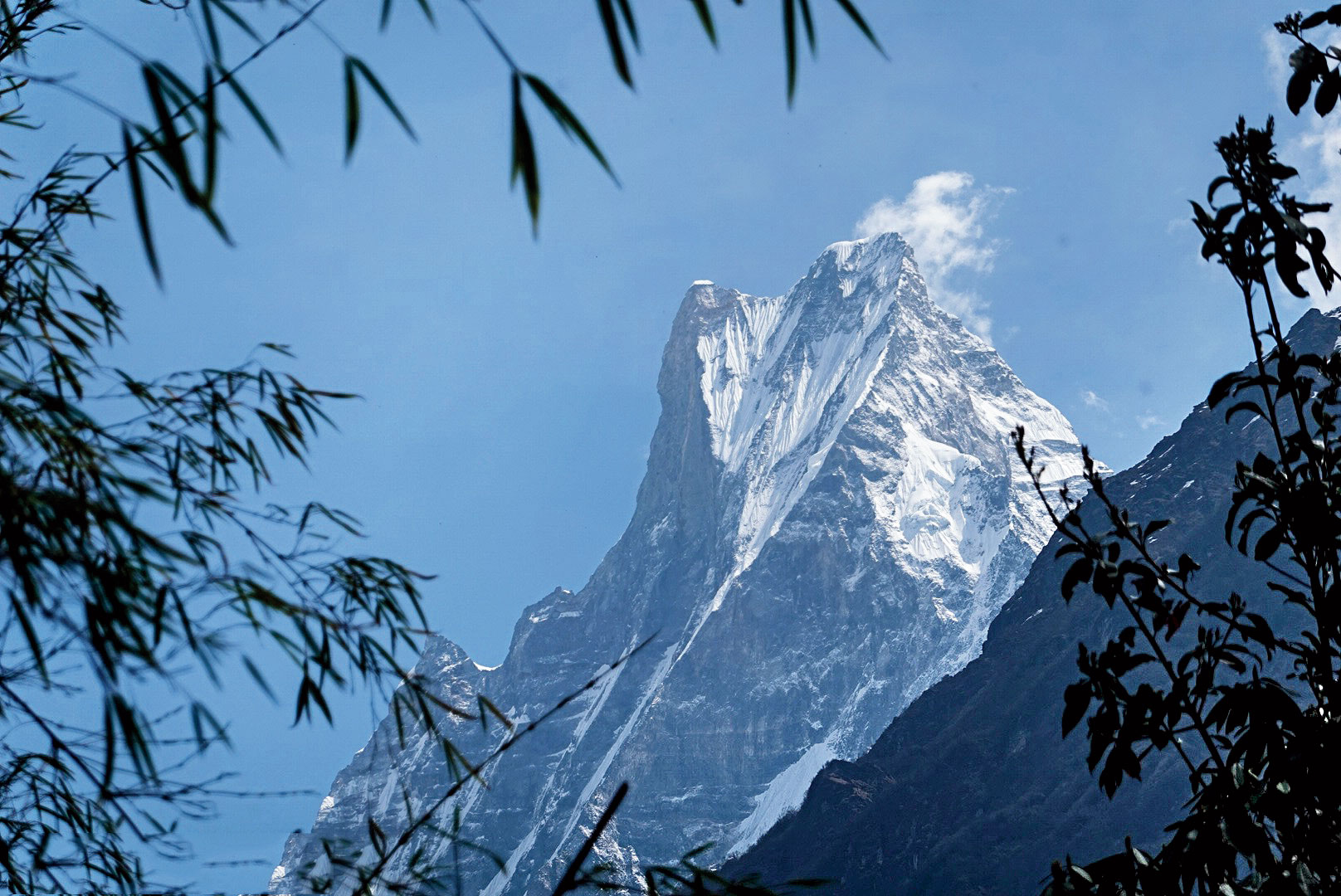 Machhapuchchhre, or the Fishtail Mountain, looks even more imposing up close