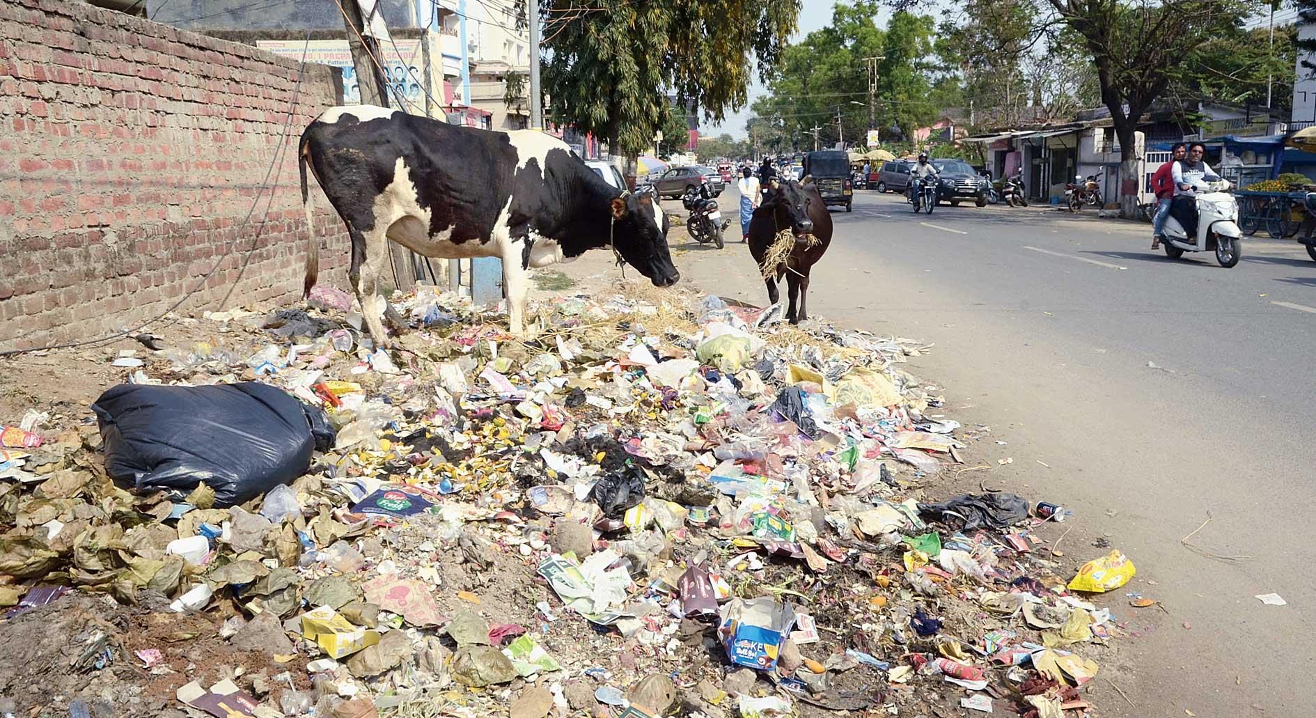Garbage, plastic and organic, lies unattended at Ashok Nagar in Ranchi on Friday.
