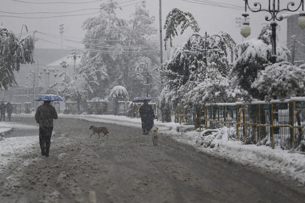 A dog crosses a street as people walk in the snow in Srinagar on Thursday, November 7, 2019. The region received its first snow on Wednesday, November 6, bringing temperatures down drastically and affecting air and vehicular traffic.